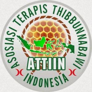 logo attin